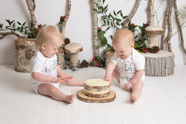 cake smash session birthday twins brothers siblings woodland Where the Wild Things Are by Samphire Photography