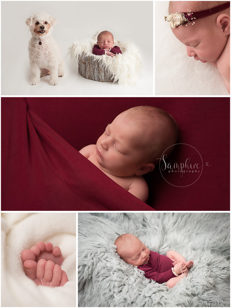 Montage of newborn girl studio portraits with pet dog, red and grey, by Samphire Photography newborn photographer Brighton Sussex