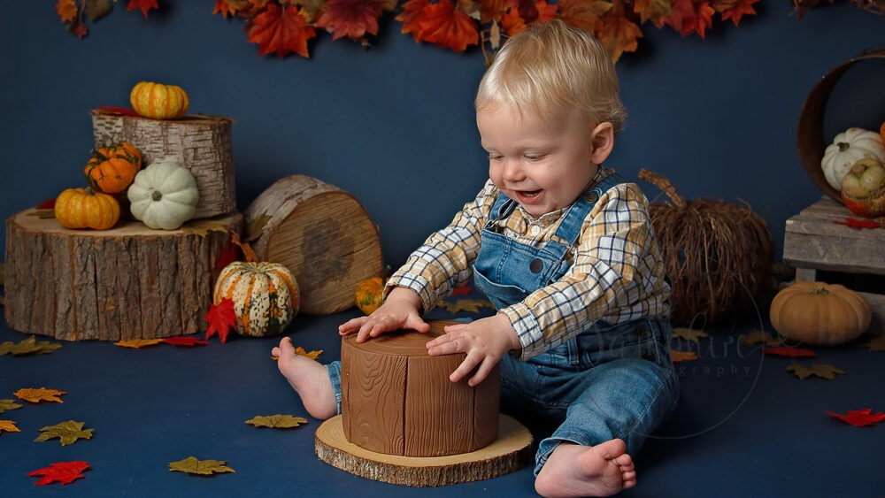 birthday boy cake smash Autumn pumpkins photographer west sussex Samphire Photography