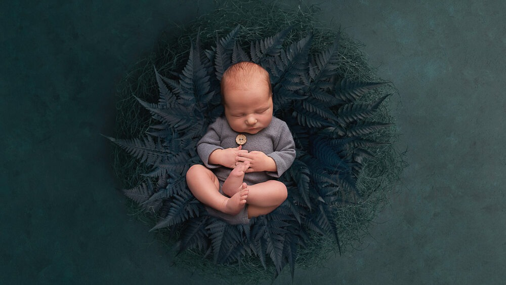 newborn portraits west sussex composite digital backdrop sleeping newborn ferns Samphire Photography Horsham