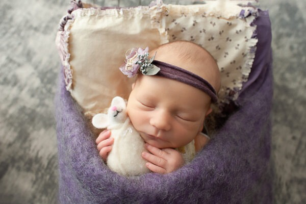 Samphire Photography Newborn Photographer Horsham experienced purple floral mouse