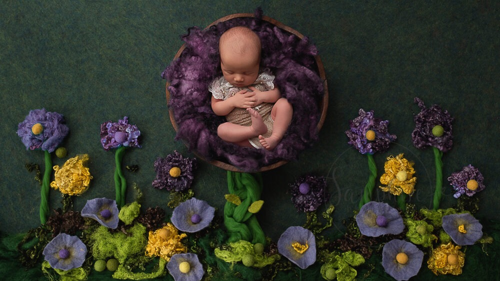 Professional Newborn Photographer Horsham girl asleep purple flowers composite digital backdrop Samphire Photography
