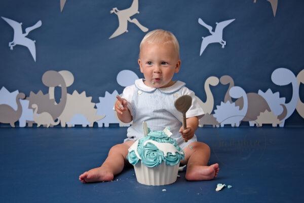 baby cake smash near me blue dinosaurs
