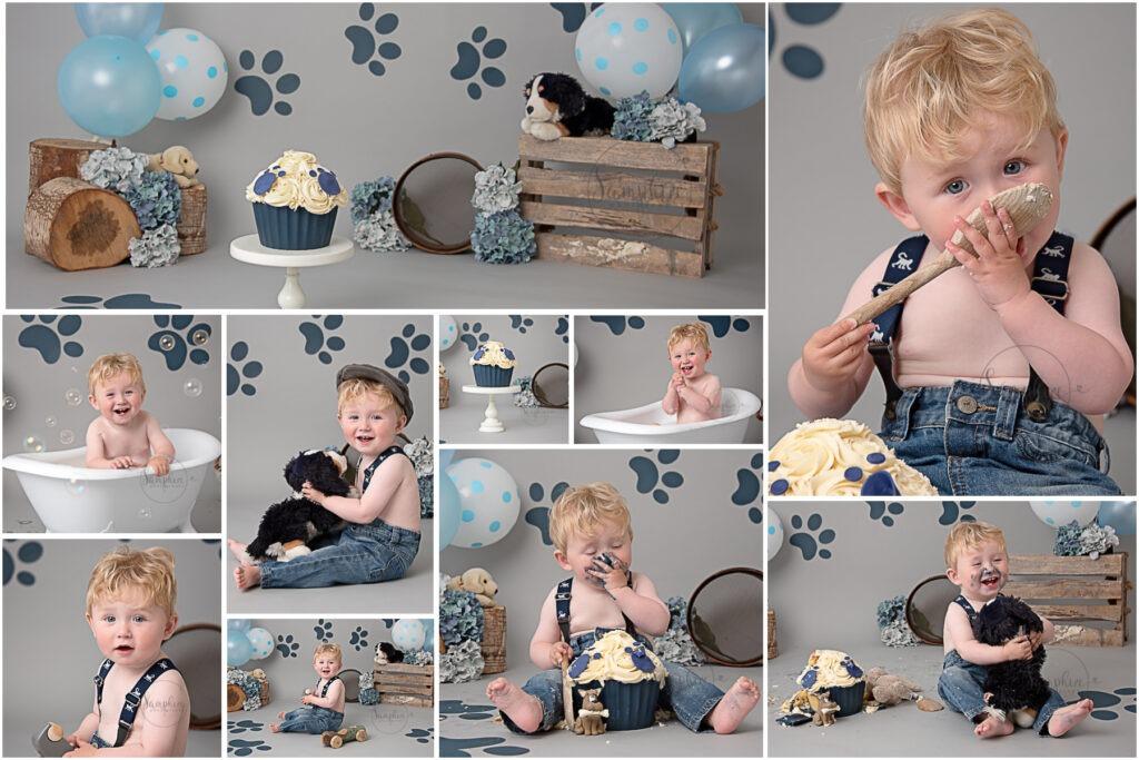 Cake Smash Photographer Samphire Sussex puppy dog blue grey