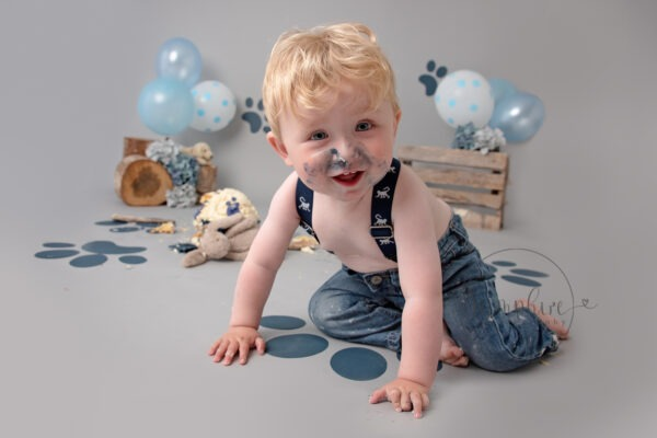Cake Smash Photographer Sussex puppy dog blue grey